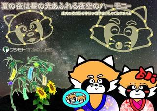 Panda_tanabata640.jpg