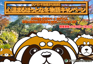 pandawinter2018.jpg