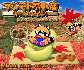 Panda_Akibeya2011_640.jpg